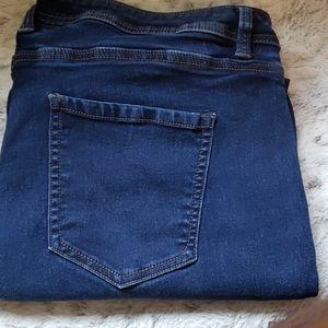 Plus Size Angel's Skinny Jeans